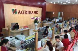 Ngân hàng Nhà nước giao nhiệm vụ điều hành Hội đồng thành viên Agribank
