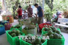 Chỉ dẫn địa lý của Việt Nam: Chưa khai thác hết tiềm năng của nông sản Việt