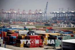 Cảng biển Hàn Quốc khó đạt mục tiêu tăng trưởng do căng thẳng Mỹ - Trung