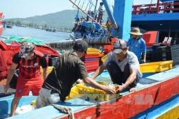 Hỗ trợ ngư dân di chuyển phương tiện để  thi công Cảng cá Tam Quang