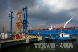 Kết luận của Phó Thủ tướng Trịnh Đình Dũng về việc di dời Bến cảng xăng dầu B12