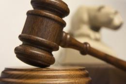 Tuyên án 7 năm tù dành cho nữ kế toán trưởng lừa đảo tiền tỷ