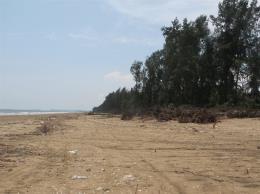 Tình trạng biển xâm thực tại Thanh Hóa ngày càng nhanh và nghiêm trọng