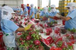 Để quan hệ thương mại Việt Nam-Ấn Độ tiến xa