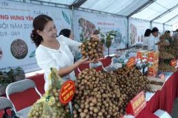 Giới thiệu, quảng bá nhãn lồng Hưng Yên tại Hà Nội