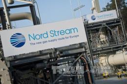 Xung quanh dự án đường ống dẫn dầu qua biển Baltic