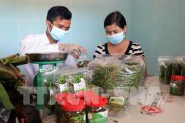 Nông sản sạch huyện vùng cao Quảng Ngãi kết nối với siêu thị BigC