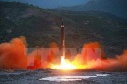 Hi vọng mới cho đàm phán hạt nhân Mỹ-Triều