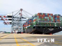 Các cảng biển tại Mỹ chịu thiệt hại nặng nề từ cuộc chiến thương mại