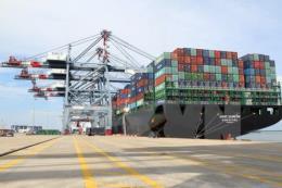 Dự án xây dựng Trung tâm logistics, cảng tổng hợp Cái Mép hạ