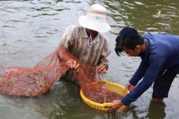 Biến Gò Công thành vùng trọng điểm xuất khẩu thủy sản