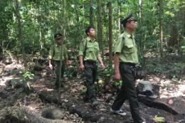 Ba cán bộ kiểm lâm ở Quảng Bình bị đánh trọng thương khi đang làm nhiệm vụ