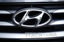 Ô tô chạy nhiên liệu hydro Hyundai sắp được xuất sang Pháp vào năm 2025