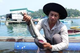 Vụ cá bớp chết hàng loạt ở Bình Sơn: Đã có kết quả xét nghiệm mẫu nước