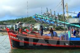 Ngư dân Quảng Bình vững vàng trên hành trình vươn khơi, bám biển