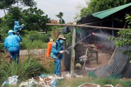 Xuất hiện 2 ổ dịch cúm gia cầm H5N6 ở Bà Rịa - Vũng Tàu