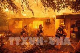 Mỹ vẫn chưa khống chế được đám cháy rừng tại California