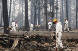 Thu thập ADN để nhận dạng nạn nhân cháy rừng tại California