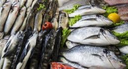 Thị trường hải sản Pháp nhiều tiềm năng