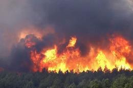 Cháy hàng ngàn m2 rừng ở thành phố Cẩm Phả