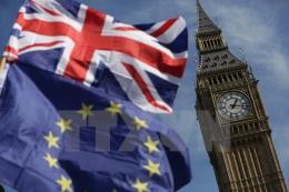 Cuộc trưng cầu ý dân năm 2016 về Brexit tốn 163 triệu USD
