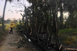 Sự cố tràn dầu ở Thanh Hóa: Dầu DO lan khắp các cống thoát nước dân sinh