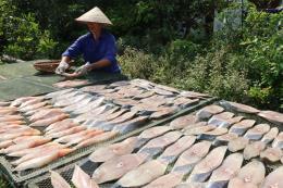 Phát triển thương hiệu cá thu một nắng Đồ Sơn