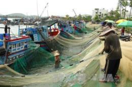 Nghề đánh bắt cá trước mối nguy biến đổi khí hậu (Phần 2)