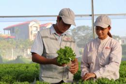 Bắc Giang: Làm giàu từ các mô hình nông nghiệp công nghệ cao
