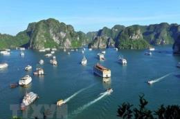 Chuyên gia Nga: Việt Nam là một ngôi sao sáng nhất tại MITT-2019