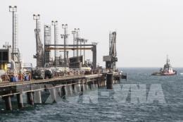 Thị trường Phố Wall khởi sắc hỗ trợ giá dầu thế giới