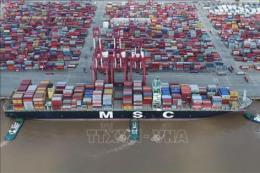 Triển vọng ảm đạm của ngành xuất khẩu Trung Quốc