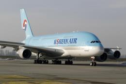 Korean Air miễn phí vé máy bay cho HLV Park Hang-seo