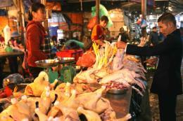 Hà Nội công bố danh mục thủ tục hành chính về an toàn thực phẩm