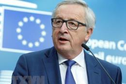 Chủ tịch EC: Tổng thống Mỹ sẽ không áp thuế đối với ô tô của EU