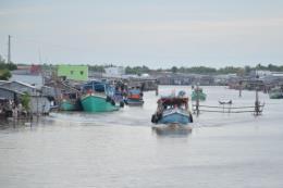 Đánh bắt hải sản của Bạc Liêu thu lãi cao