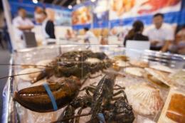 Căng thẳng thương mại, xuất khẩu tôm hùm Mỹ sang Trung Quốc vẫn ổn định