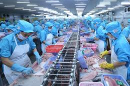 Bứt phá cho xuất khẩu cá tra - Bài cuối: Để chinh phục thị trường khó tính ?