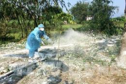 Lập nhiều chốt kiểm dịch ngăn chặn, phòng chống dịch tả lợn châu Phi