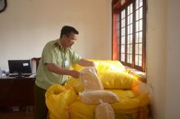 Bắt giữ hơn 1 tấn ruốc thịt không rõ nguồn gốc