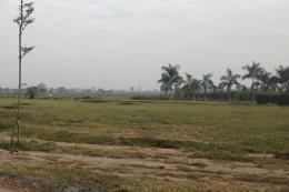 Sau 6 năm khởi công, dự án ở Vĩnh Phúc vẫn là cánh đồng cỏ hoang