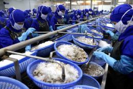 Tăng cạnh tranh cho thủy sản Việt Nam - Bài 2: Xác định chiến lược mới