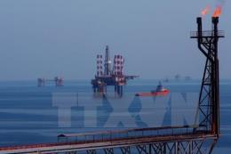 Sáng kiến tại Vietsovpetro làm lợi hàng triệu USD