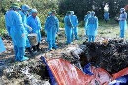 Báo cáo  kết quả làm việc của 2 đoàn kiểm tra về dịch tả lợn châu Phi