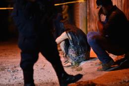 13 người thiệt mạng sau vụ xả súng ở Mexico