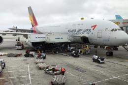 """Asiana Airlines sẽ được các chủ nợ """"rót"""" 1,4 tỷ USD"""