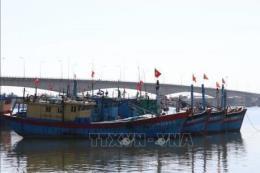 Đà Nẵng kêu gọi các địa phương khắc phục