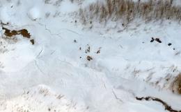 Tuyết lở, chôn vùi 4 nạn nhân xấu số