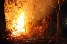 Điện Biên: Cháy rừng lớn trong đêm
