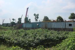 Nhiều diện tích đất nông nghiệp ở huyện Hoài Đức sử dụng sai mục đích